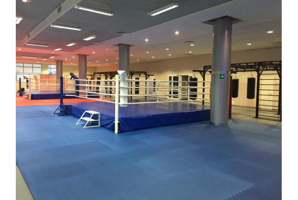 Боксерские мешки в тренировочный зал к чемпионату мира по боксу