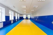 Стеновые протекторы для спортивно-адаптивной школы