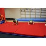 Мат гимнастический ткань хлопок 100%  в Екатеринбурге