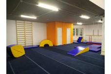 Для спортивной школы ролл-маты, гимнастические модули, спортивные маты из ПВХ